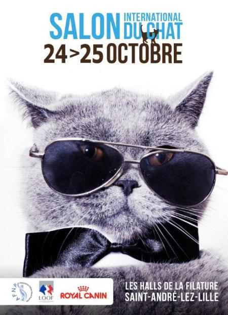Salon international du chat, 24 et 25 octobre 2015