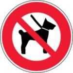 pas-de-chiens