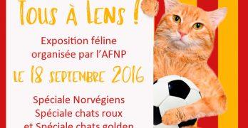 Lens, le 18 septembre 2016