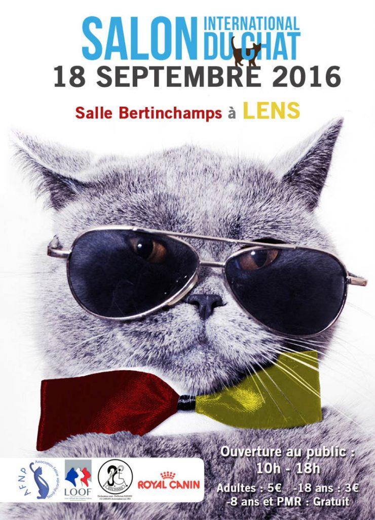 exposition de Lens septembre 2016, orgnaisée à l'AFNP