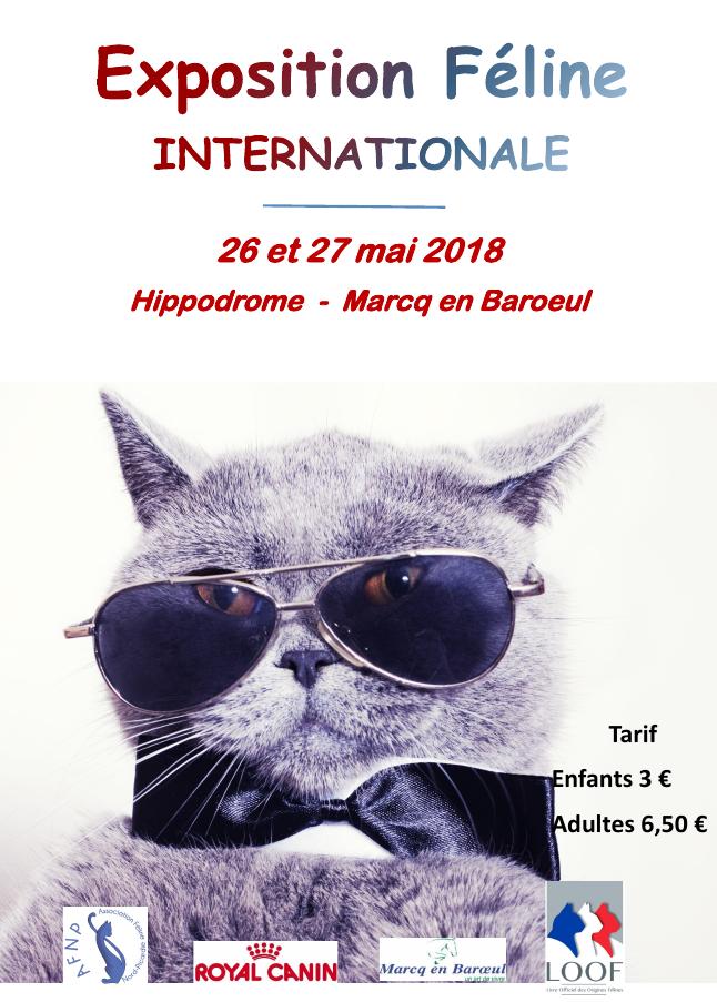 Marcq en Baroeul 26 et 27 mai 2018